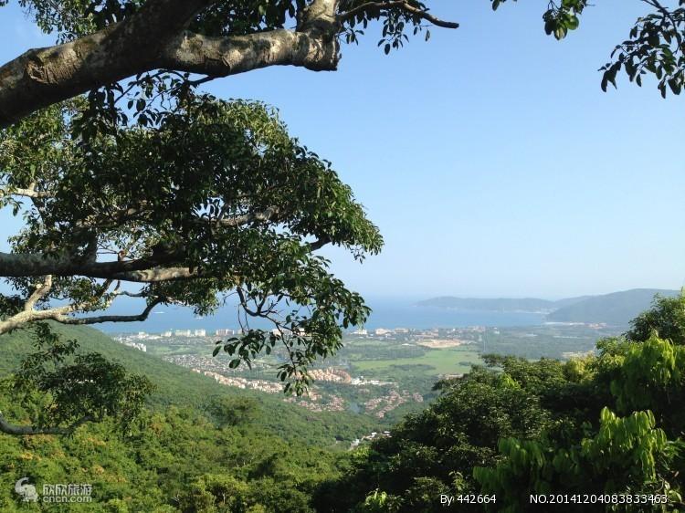 亚龙湾森林公园图片
