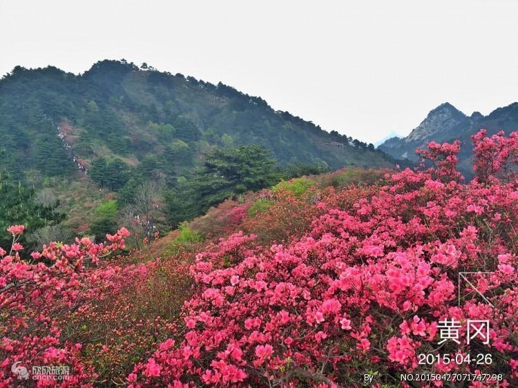 龟峰山图片