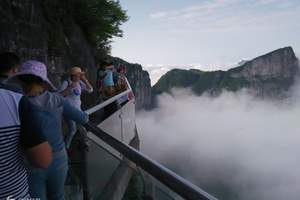 热卖:张家界森林公园+玻璃桥+天门山索道+凤凰城四日精华游
