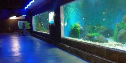 东京极地海洋馆