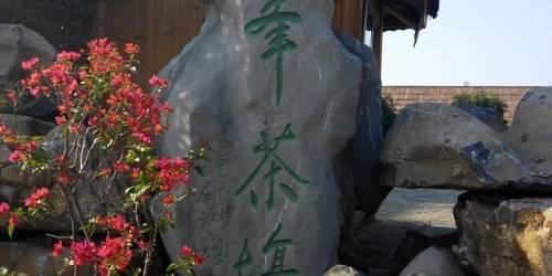 七仙峰茶場