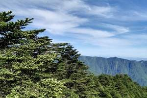 畅游湖北:双动 武当山、神农架全景、三峡大坝精华五日游