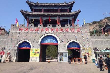 威海动物园跟团推荐——青岛到威海动物园、石岛赤山亲子二日游