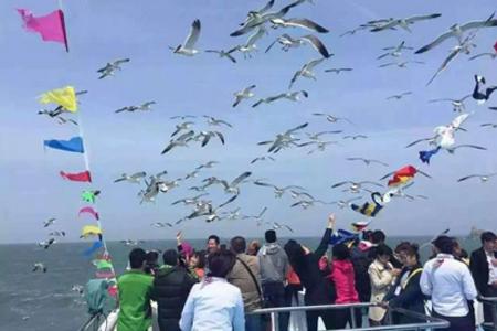 【夏季长岛度假游】青岛跟团去长岛、蓬莱纯玩大巴二日游 海边度假首选