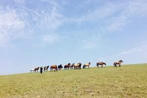 【3天2晚】呼伦贝尔旅游大草原额尔古纳满洲里纯玩3日游自由行