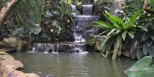 海口热带植物园