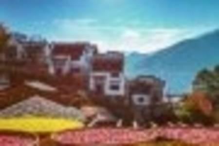黄山-西递宏村-歙县古城-篁岭5日游(赏黄山日出、游西海大峡谷、深度游黄山篁岭)