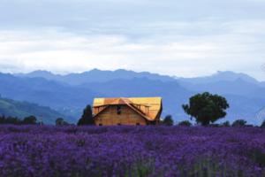 西安推出十大乡村旅游精品线路