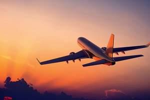 中国民航局:停止受理8大航空客运加班、包机等申请