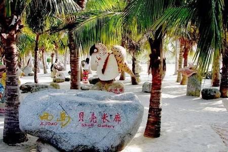 海南度假品质游,青岛出发三亚跟团6日游,纯净海洋一价全含