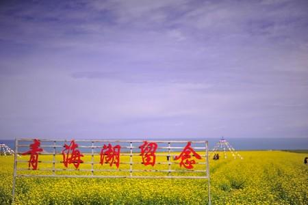 大漠花海重庆到甘肃青海品质纯玩儿大环线去动回飞8日游