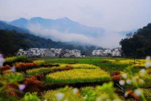 山东省筹资亿元推动乡村旅游持续发展