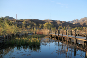 北京将打造百个乡村振兴示范村 聚力美丽乡村风景线