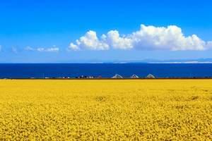 国庆十一去青海湖6日游多少钱?茶卡盐湖,塔尔寺,金银滩草原