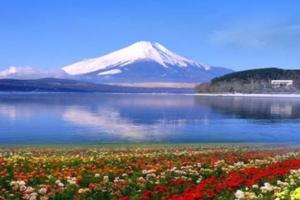 国庆去日本6日游多少钱?富士山,迪士尼乐园,大阪旅游预定须知