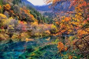 四川省文化和旅游创意产业联盟成立