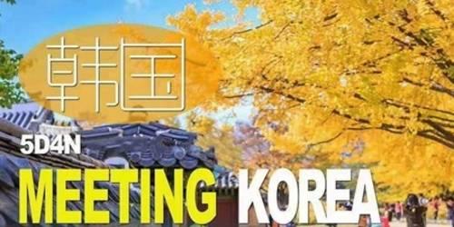 自由行天天发团,青岛到韩国首尔双飞5日游,全程市区4花酒店