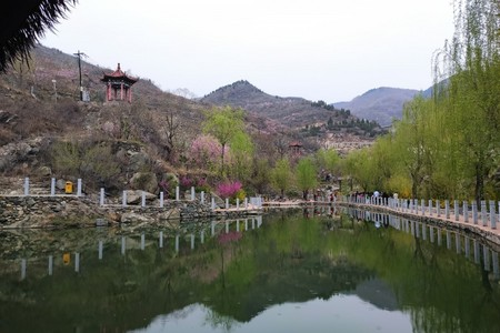 济南南部山区龙门山旅游-春季赏花好地方-适合亲子、团建龙门山跟团一日游